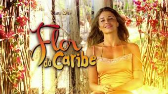FLOR DEL CARIBE