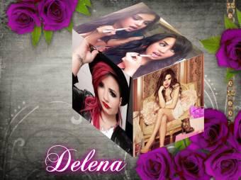 Cubo de Delena