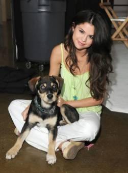 La Mascota De Selena