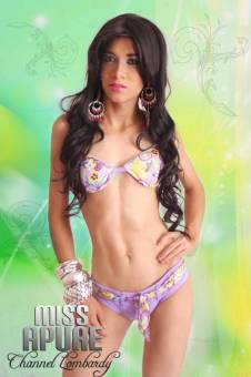 Miss Gay Apure