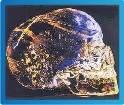 Cráneos de cristal