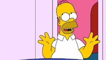 Homero Simpson ;)
