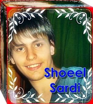 Shoel Sardi