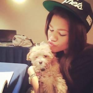 zendaya no tiene una mascota pero esta obsecionada con el cachorrito de bella, y por cierto es su madrina, lo lei en la revista teen
